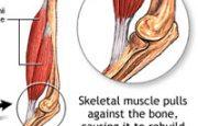 How Exercise Helps Bones